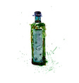 Watercolor Green Bottle vector image