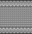 seamless texture black and white lace pattern for vector image