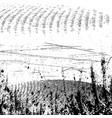 circular textures set vector image vector image