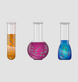 set laboratory glassware with bacteria vector image vector image