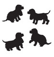 set of black dogs silhouette isolated on white vector image vector image