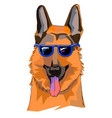 the of shepherd with glasses this is vector image vector image