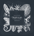 tropical wreath design on chalkboard invitation vector image vector image