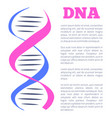 dna logotype of nucleotides carrying genetic info vector image vector image