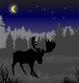 Elk in the night forest vector image vector image