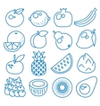 fruits set line icons vector image