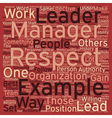 Leadership Be An Example text background wordcloud vector image vector image
