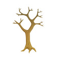 leafless plant tree with empty branches vector image vector image
