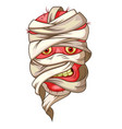 mummy head cartoon vector image