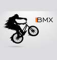 silhouette a bmx rider vector image
