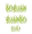 Realistic green grass vector image