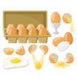 cartoon chicken eggs fresh boiled fried eggs vector image vector image