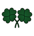 clover four leaves vector image