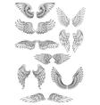 Heraldic bird or angel wings set vector image