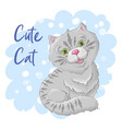 postcard cute cat print on clothes vector image vector image