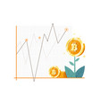 bitcoin investment concept vector image