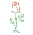 Doodle color abstract red rose vector image vector image