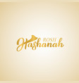rosh hashanah jewish new year hand lettering vector image vector image