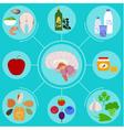 anatomic brain health vector image