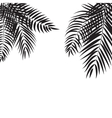 Beautifil Palm Tree Leaf Silhouette Background vector image