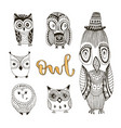 set of cute doodle owls birds isolated collection vector image vector image