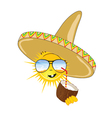 sun with sombrero and coconut vector image vector image