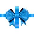 Blue bow ribbon vector image