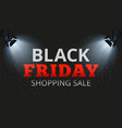 black friday shopping sale special offers and vector image vector image
