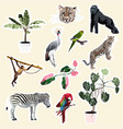 cute animal object collection with leopard zebra vector image vector image