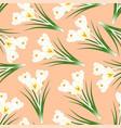 white crocus flower on light orange background vector image vector image