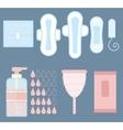 Feminine personal hygiene items set vector image