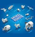 animal robots isometric flowchart vector image