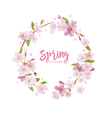 Cherry Blossom Spring Background vector image vector image