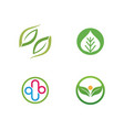 ecology leaves logo vector image