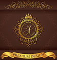 Letter X Luxury Logo template flourishes vector image