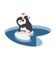 penguins hug on a piece iceberg vector image