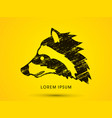 raccoon face graphic vector image vector image
