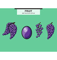 Set of grapes and grape bunches vector image