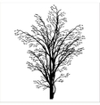 spring tree silhouette vector image