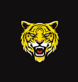 tiger face sport logo design vector image vector image