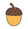 acorn nut fruit autumn icon vector image