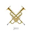 Jazz logo icon vector image vector image
