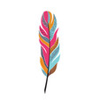 large colored bright feather with patterns vector image vector image