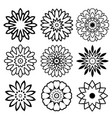 mandala collection vector image vector image