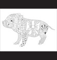 piggy coloring book for adults vector image vector image