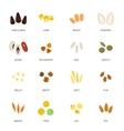 Seed Icon Flat vector image vector image
