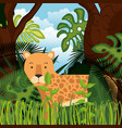 wild cheetah in the jungle scene vector image