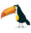 cute cartoon toucan vector image vector image