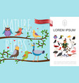 flat colorful birds natural composition vector image