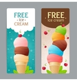 Ice Cream Coupon Set vector image vector image